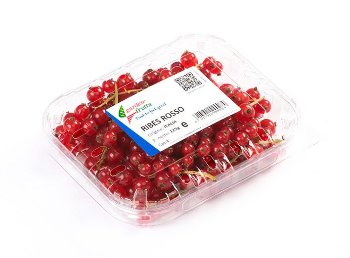 garden-frutta-slide-_0001_Garden_Frutta-33