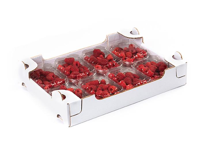 garden-frutta-slide-cuor-di-bosco-2