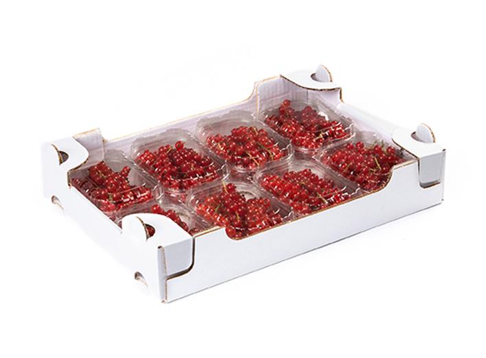 garden-frutta-slide-cuor-di-bosco-3