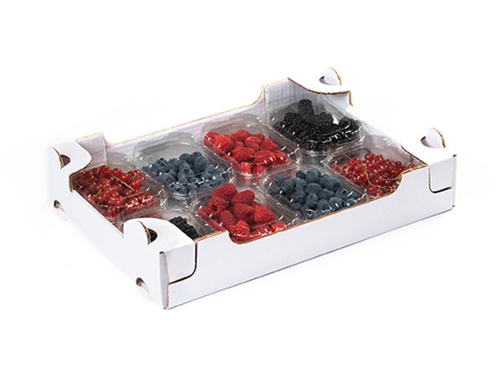 garden-frutta-slide-cuor-di-bosco-5