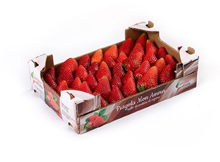 garden-frutta-slide-fragole-mon-amour-3